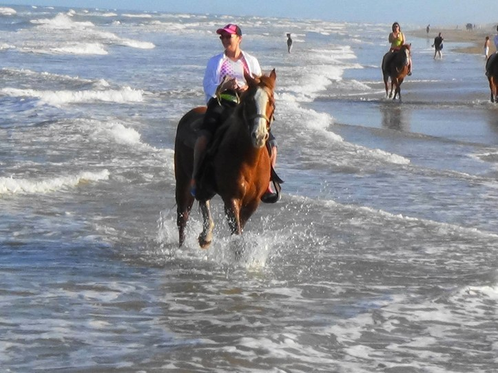 Horse Back Riding South Padre Island